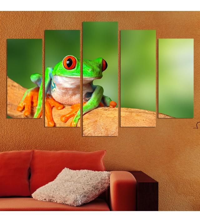 Декоративен панел за стена с цветен зоо мотив - екзотична жаба Vivid Home